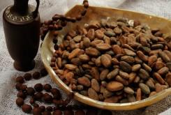 какао бобы Минск